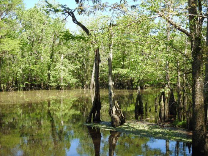 Dead River Landing Recreation Area