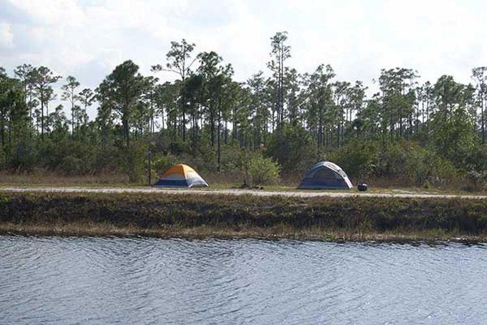 Jones Hungryland Wildlife Management Area