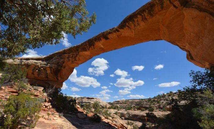 Natural Bridges National Monument